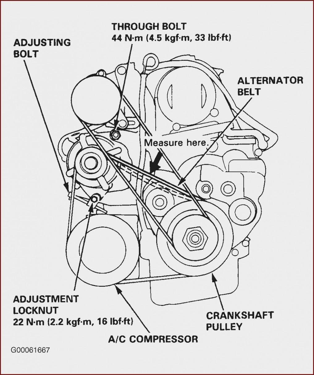 Ford Zetec Engine Belt Diagram