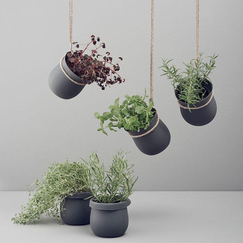 Indoor Garden Ideas Hang Your Plants