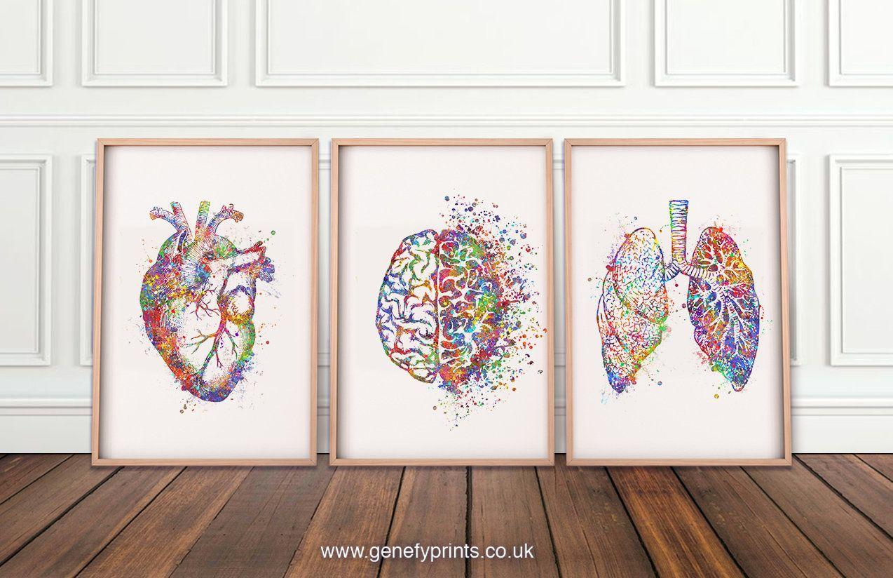 21+ Heart, Brain, Lungs Watercolour Print, Set of 3 Human Brain Prints, Lungs Prints, Heart Poster AS96