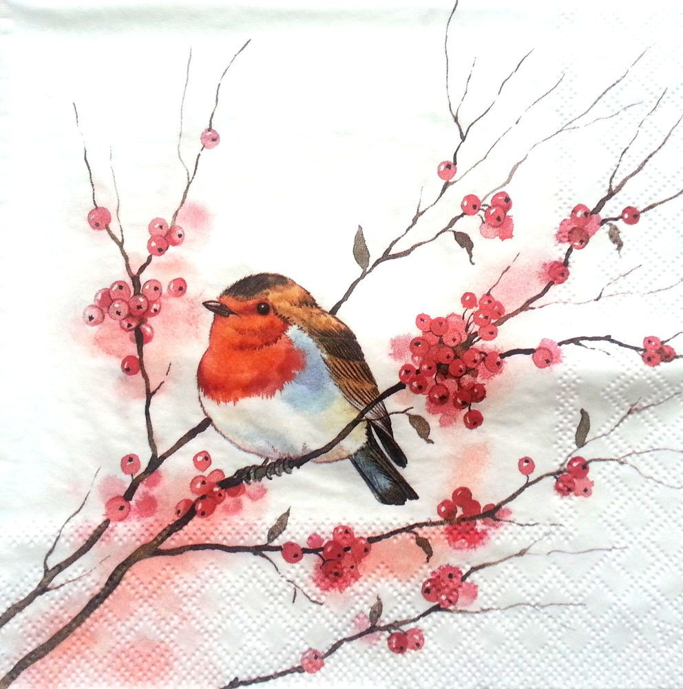 Lunch 4 Single Vintage Table Paper Napkins for Decoupage,Birds in lo,Decopatch