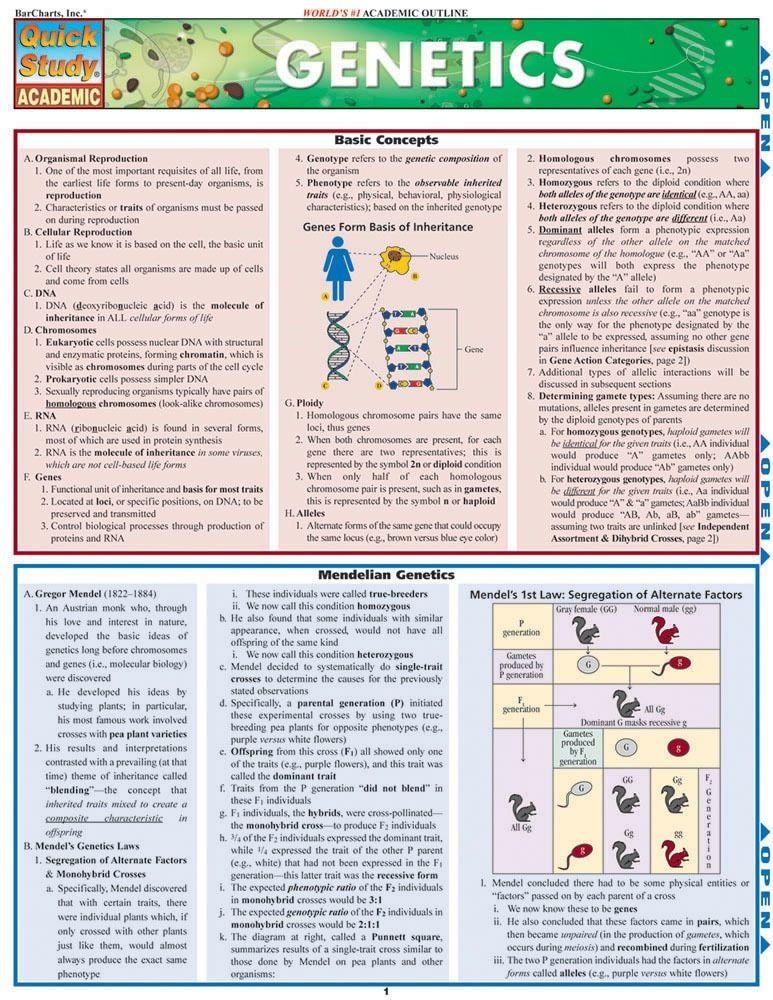 Genetics Laminated Study Guide (9781423203063) | Genetics | Genetics