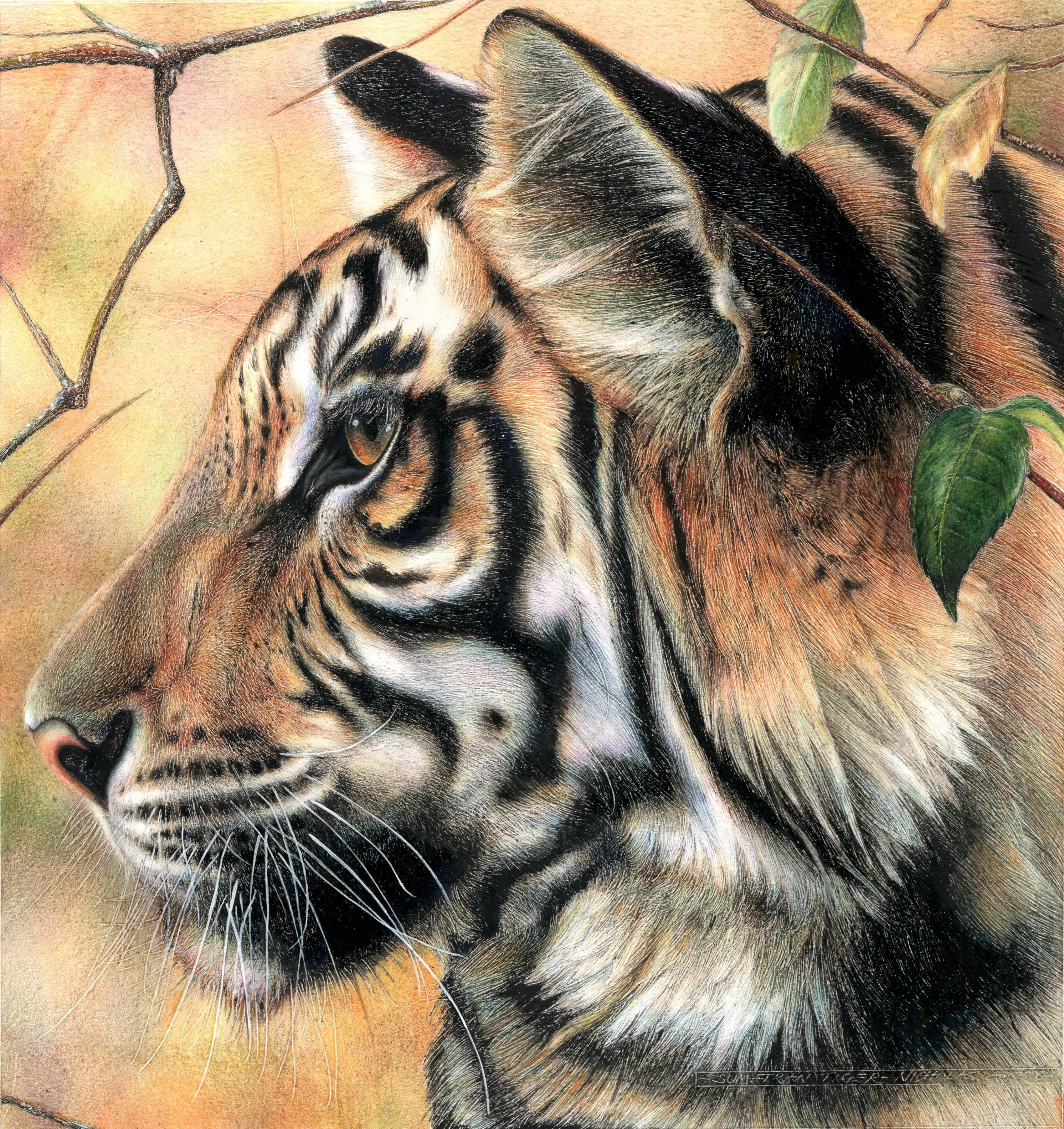 Related with Wildlife Art Gallery, here are several great