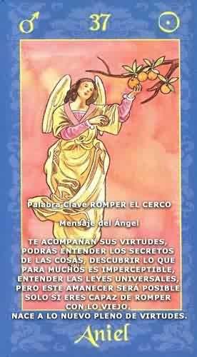 Oraculo Angelico Oraculo De Angeles El Portal Del Angel De La