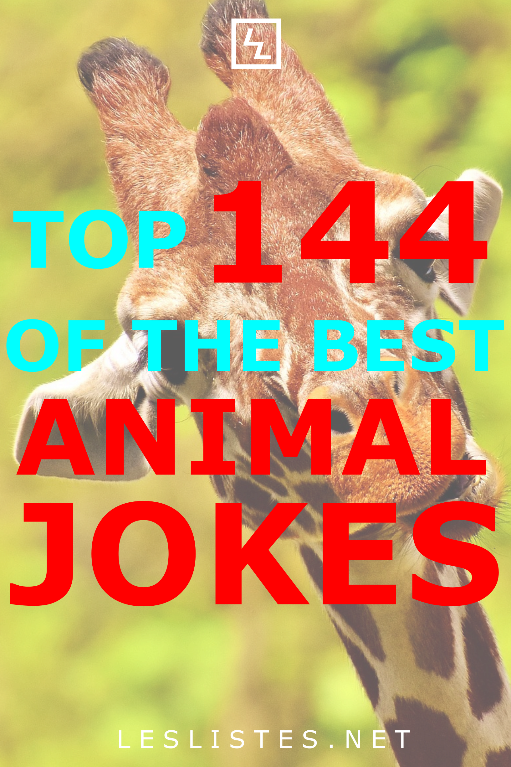 The Top 144 Funny Animal Jokes of All Time (avec images