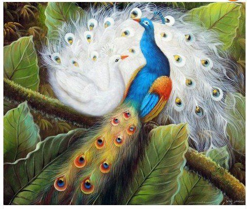 Blue and White Peacock Pair In Garden Tree Bird Art Stretched ...
