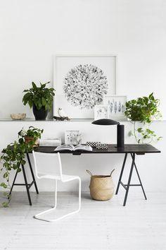So stilvoll im weiss, und doch gemütlich durch die schöne #Klimop #Pflanzen #Inspiration