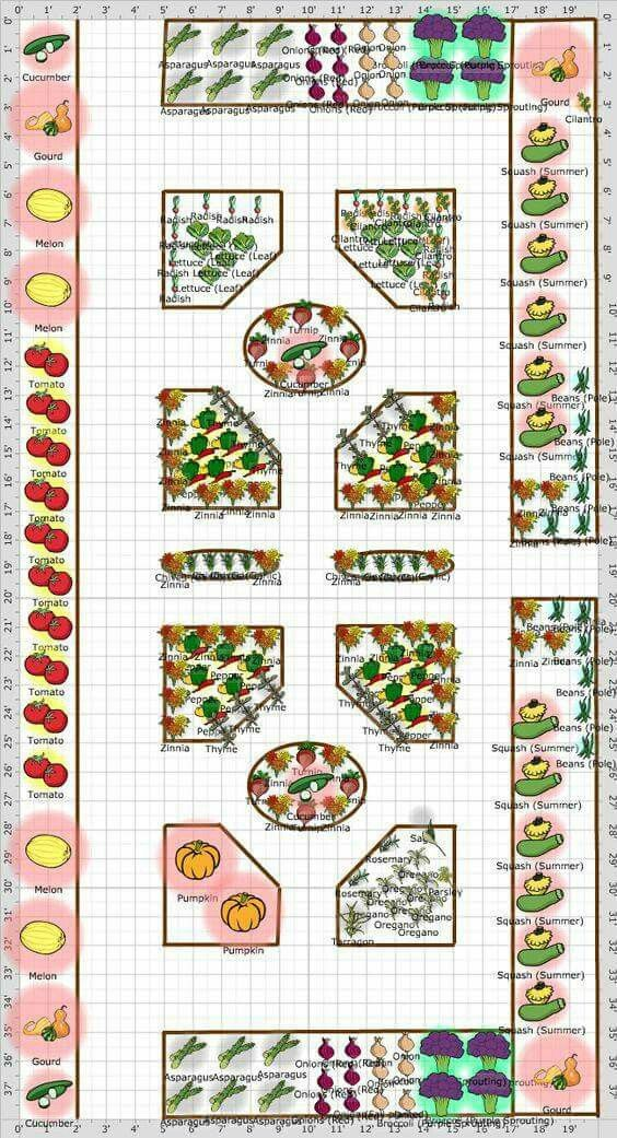 Vegetables Plot | Garden Patterns/Colors | Pinterest | Vegetables