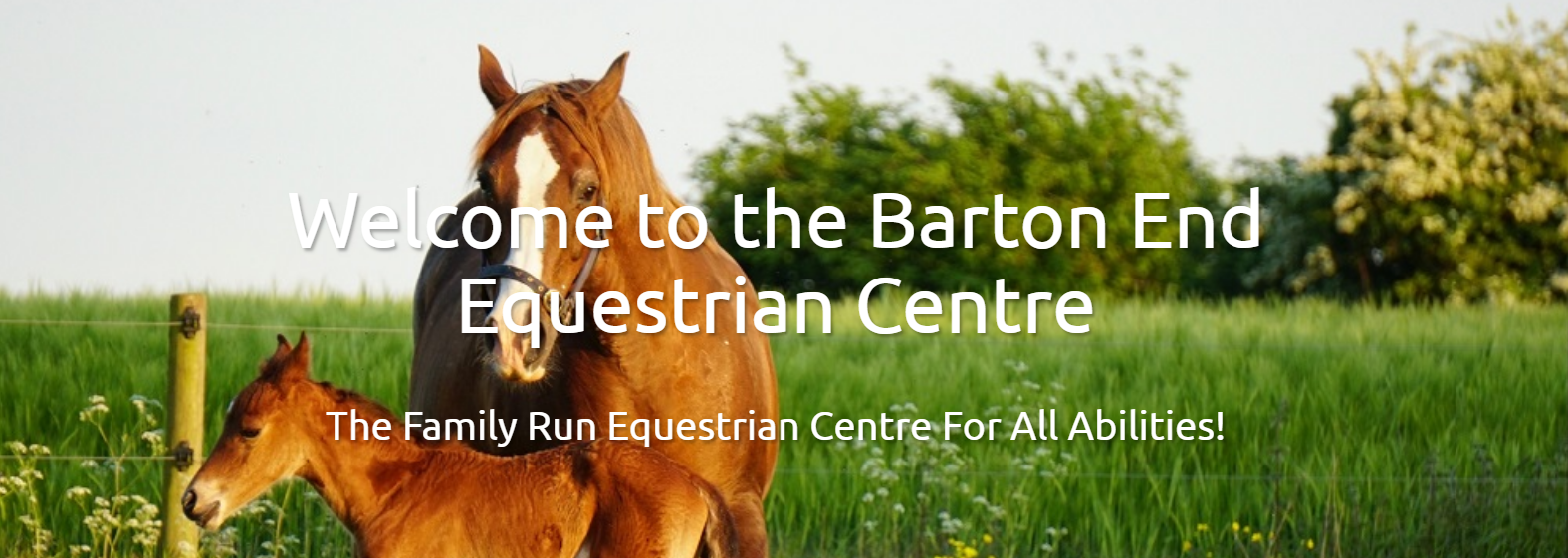 Hacking at Barton End Equestrain Centre Equestrian