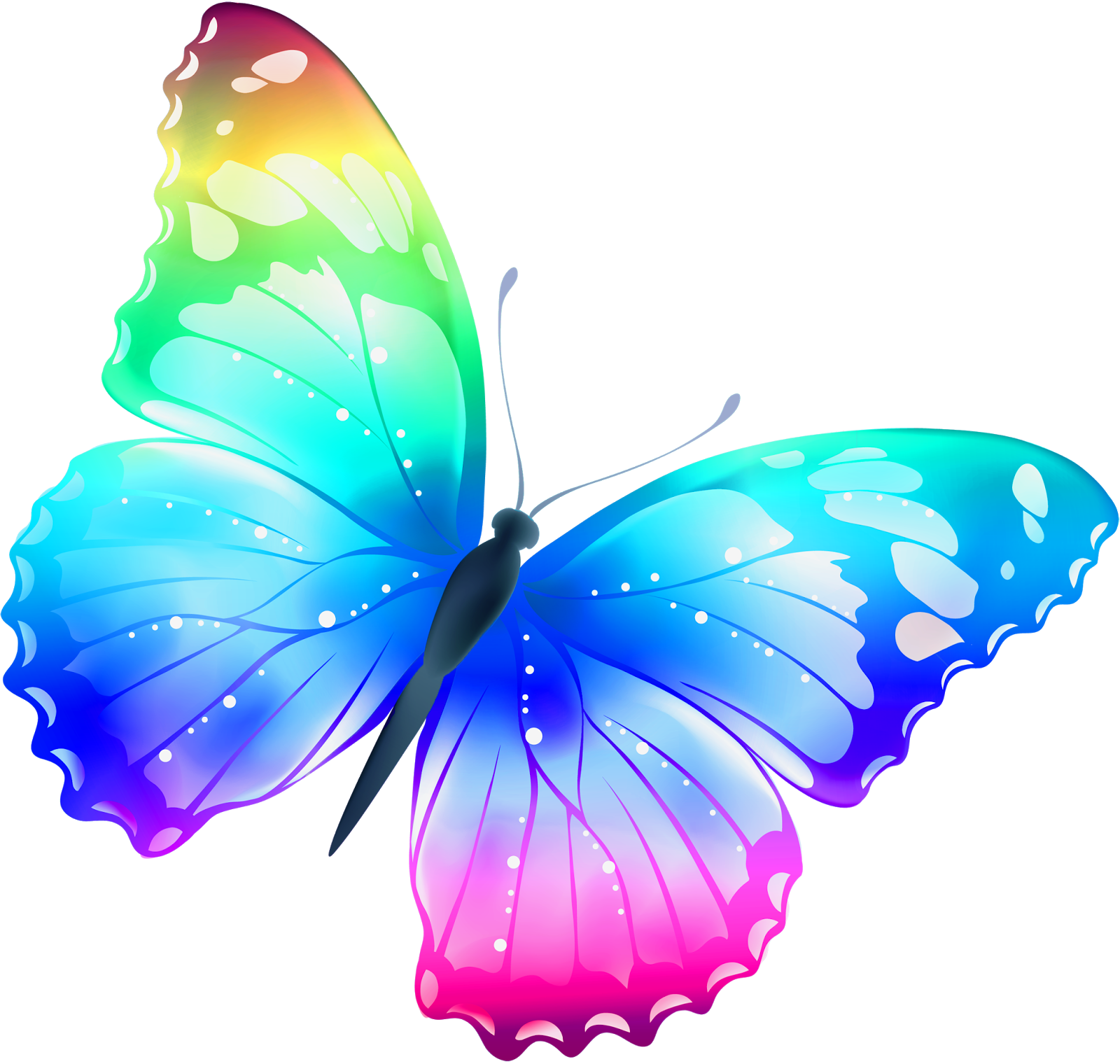Imagenes Y Fotos Imagenes De Mariposas Parte 10 Dibujos Moldes