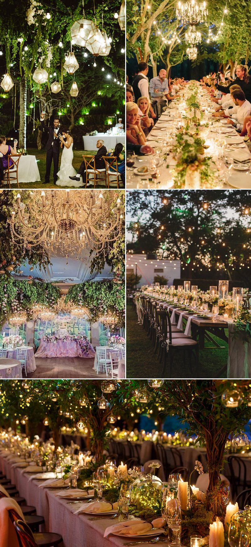 Wedding decorations trees with lights  Pin by Tilda on Weddings  Pinterest  Wedding Weddings and Reception