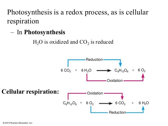 Oxidation numbers photosynthesis europium nitride synthesis