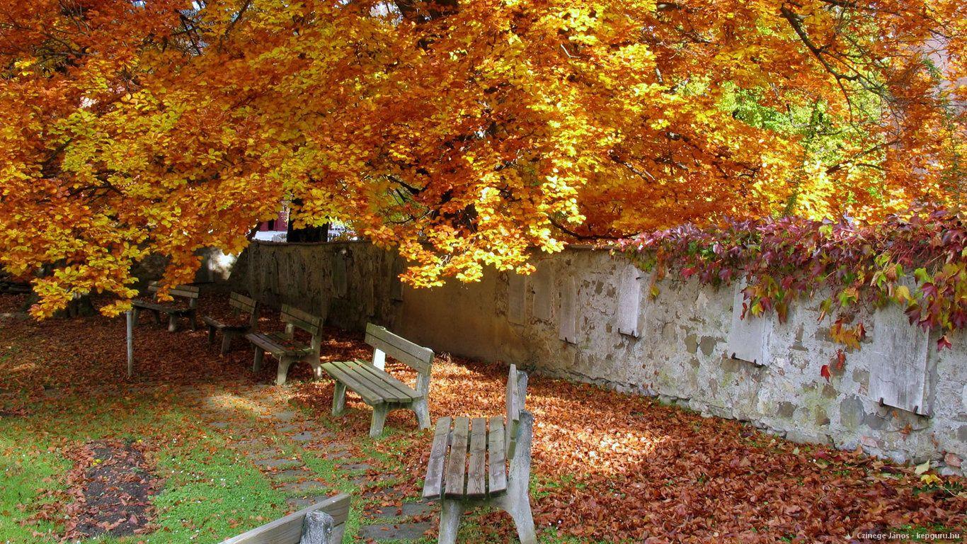Áustria outono
