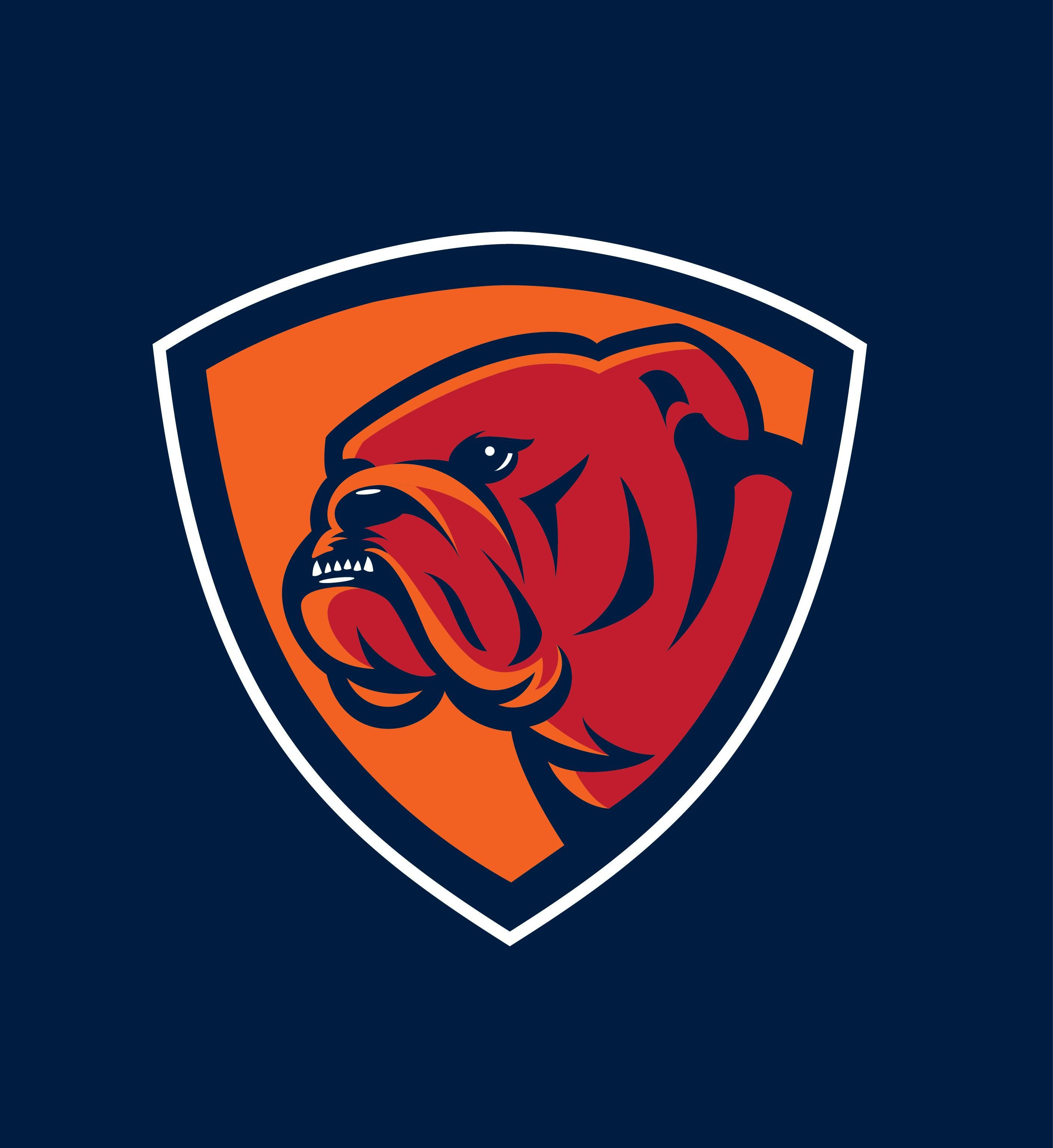 How To Design Sports Logos Create Your Own Team Mascot