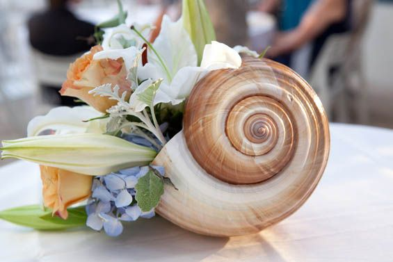 Intimate Ocean Inspired Wedding Colors At The Waldorf Astoria Naples Fl Beach Wedding Centerpieces Seashell Wedding Wedding Themes