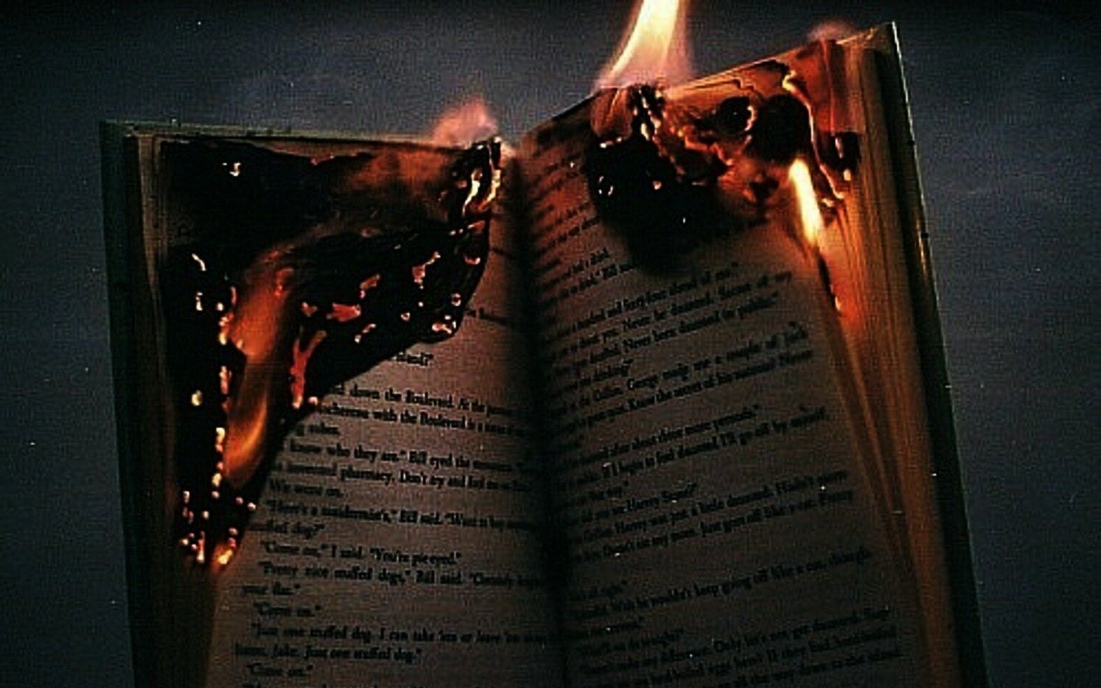 Pin By Aminath Shymer On Books Fire Photography Book Burning The Book Thief