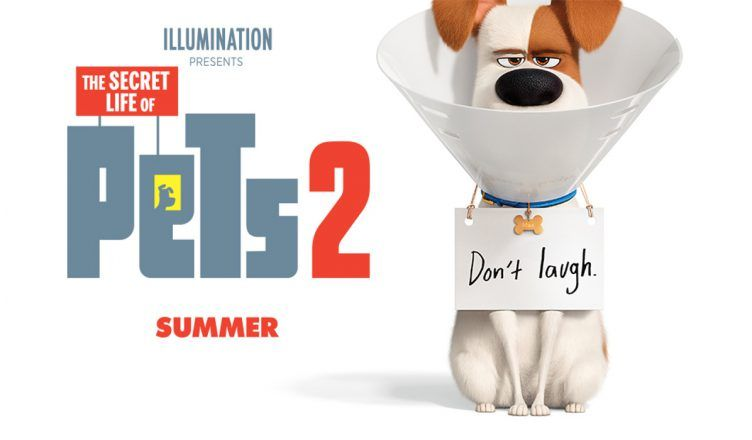 The Secret Life Of Pets 2 Trailer 752440 Film Goblin Best Representation Descriptions Related Searches Th The Secret Movie Secret Life Of Pets Secret Life