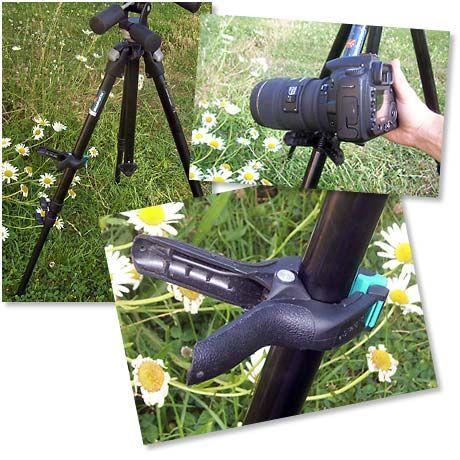 Epingle Par Didie Lafaille Sur Photo Macrophotographie Astuces Photographie Photographie