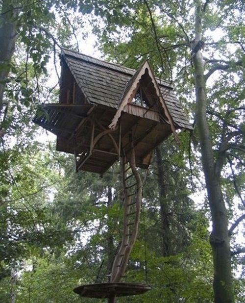 Luxury Tree House Plans: Treehouse Fantasies