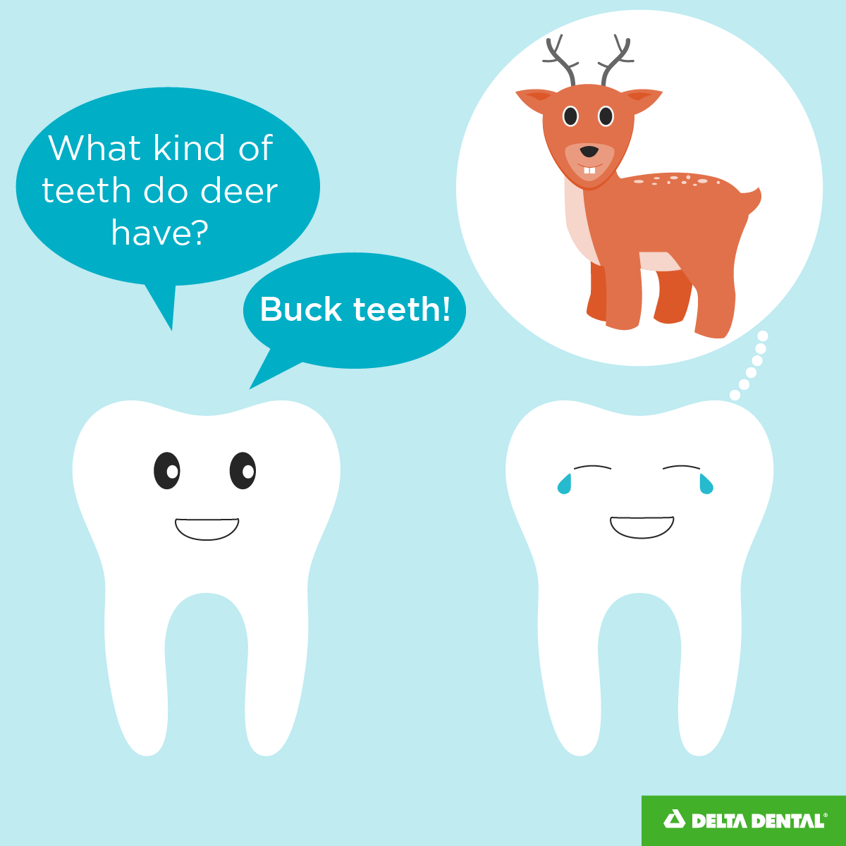 Dental Jokes and Comics to Crack You Up | Smile Often! | Pinterest ...