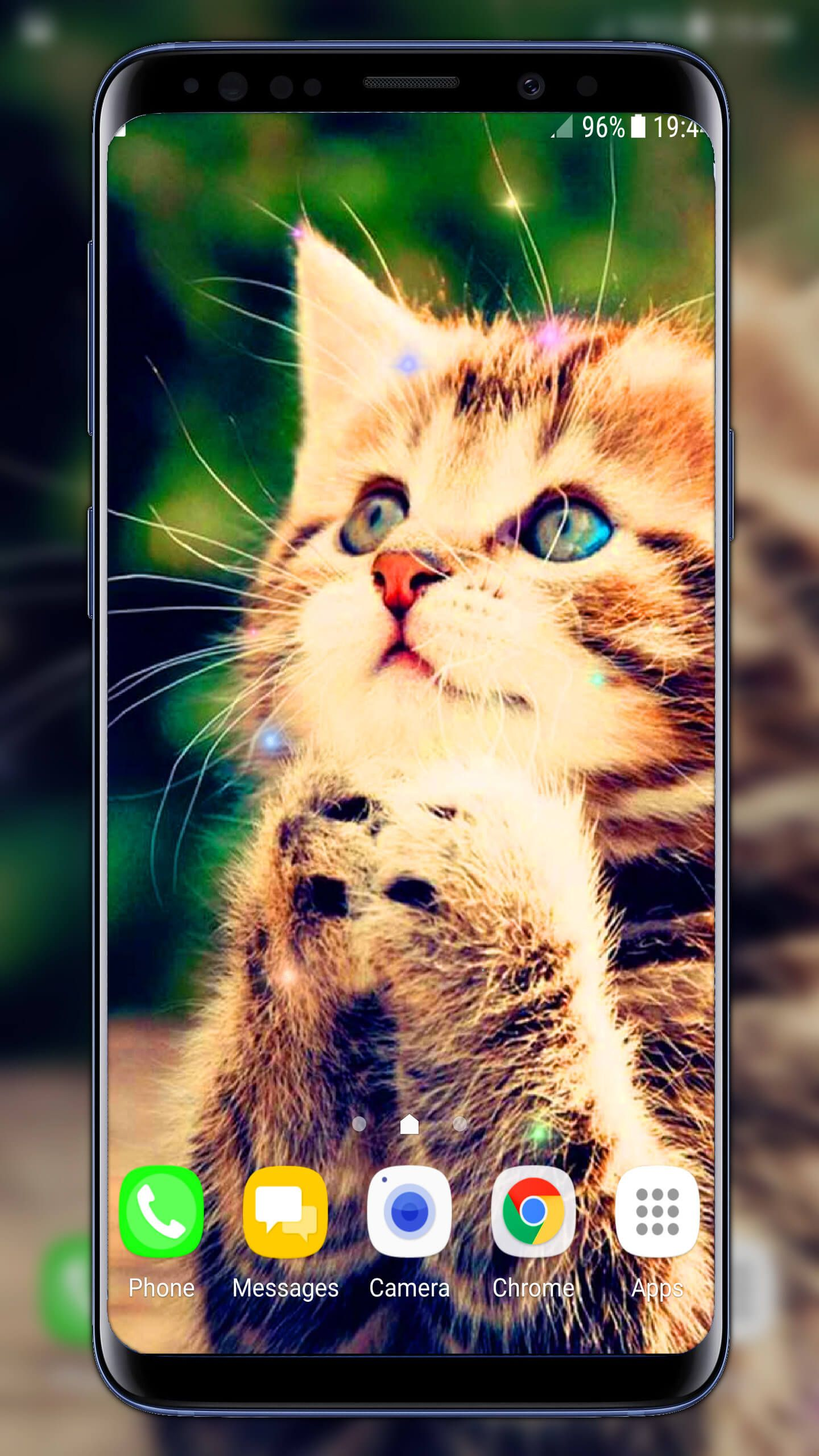 Kittens Live Wallpaper Kittens Cute Wallpaper Live Wallpapers Android Theme Wallpaper