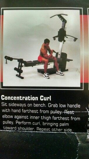 Concentration curl weider crossbow exercises pinterest