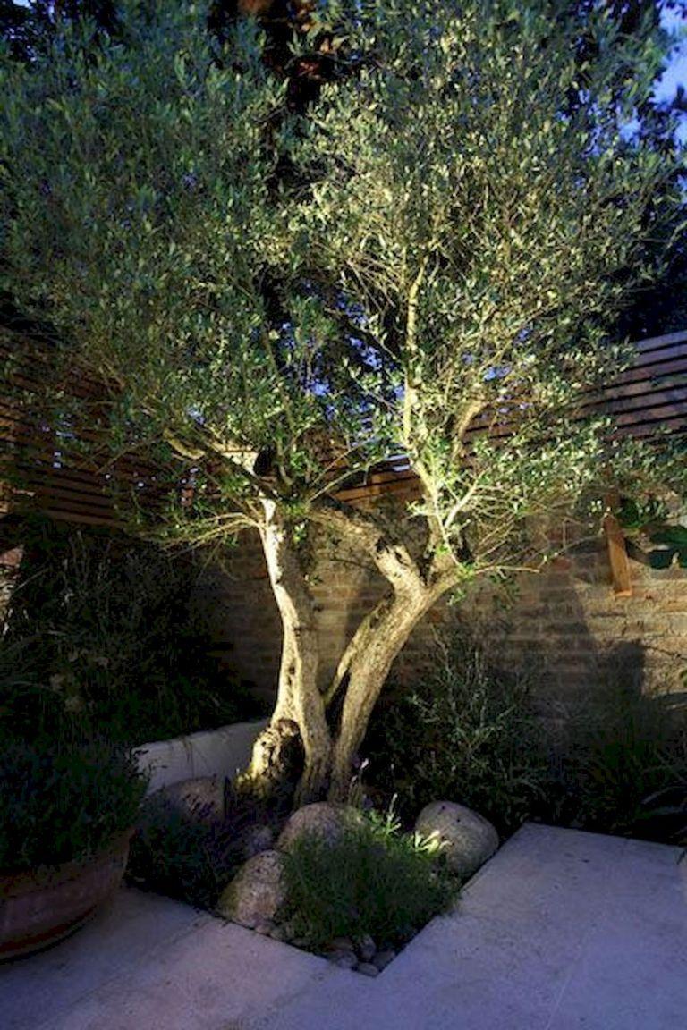 55 Stunning Garden Lighting Design Ideas And Remodel (9 ...