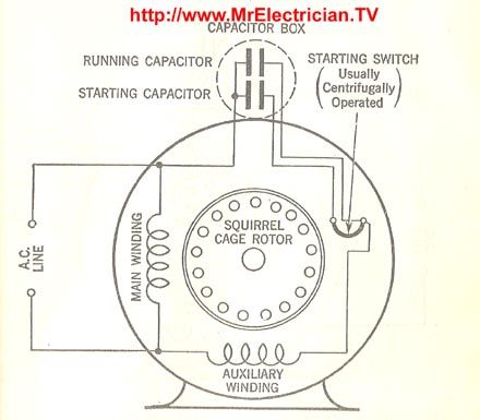 this is a split phase capacitor run electric motor diagram. Black Bedroom Furniture Sets. Home Design Ideas