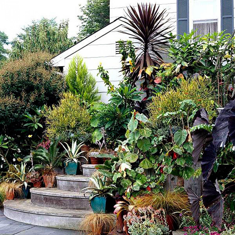 3b14617505a3b44deaafabaf0ff0727b - What Zone Is Long Island For Gardening