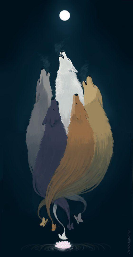 Wolf S Rain Volchij Dozhd Art Animal Art Wolf Illustration