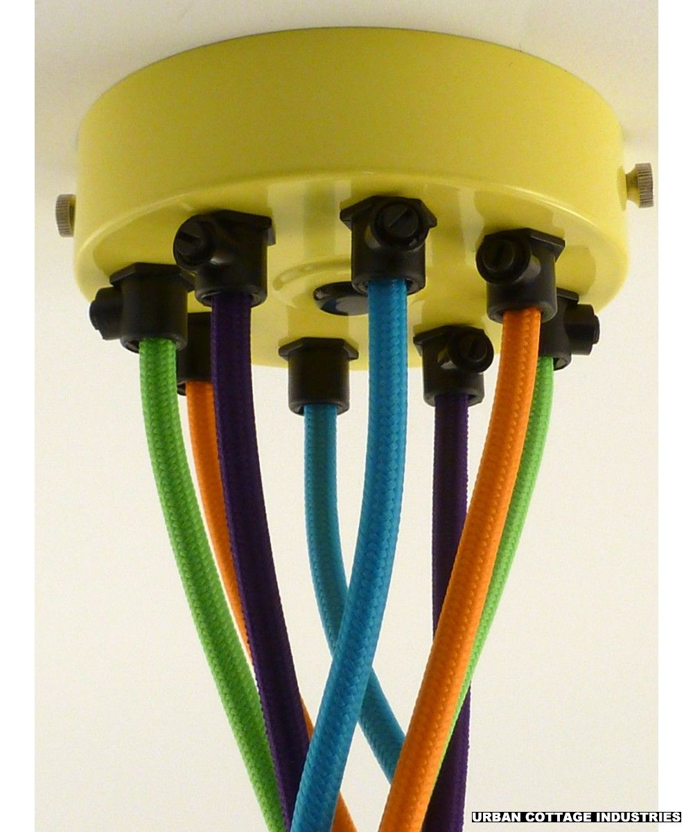 Ceiling Rose Multiple Cable Flex Outlet Yellow The Study Wiring
