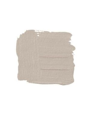 Smokey taupe benjamin moore smokey taupe 983 this is the for Light taupe color