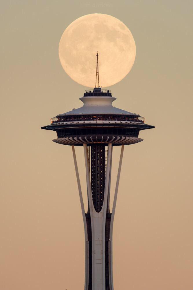 Full Moon In Seattle Blue Moon Image Blue Moon Seattle