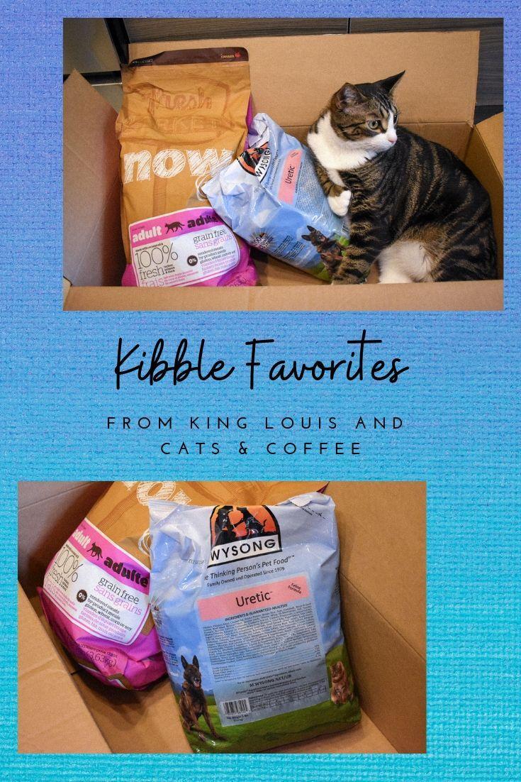 Cat mom life high quality dry food kibble favorites