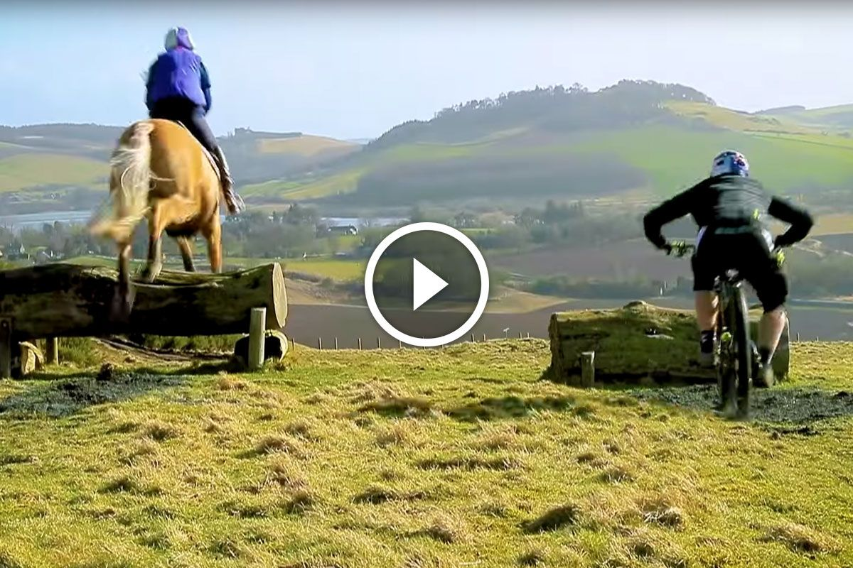 Watch Danny Macaskill Vs A Horse Bike News Mountain Biking
