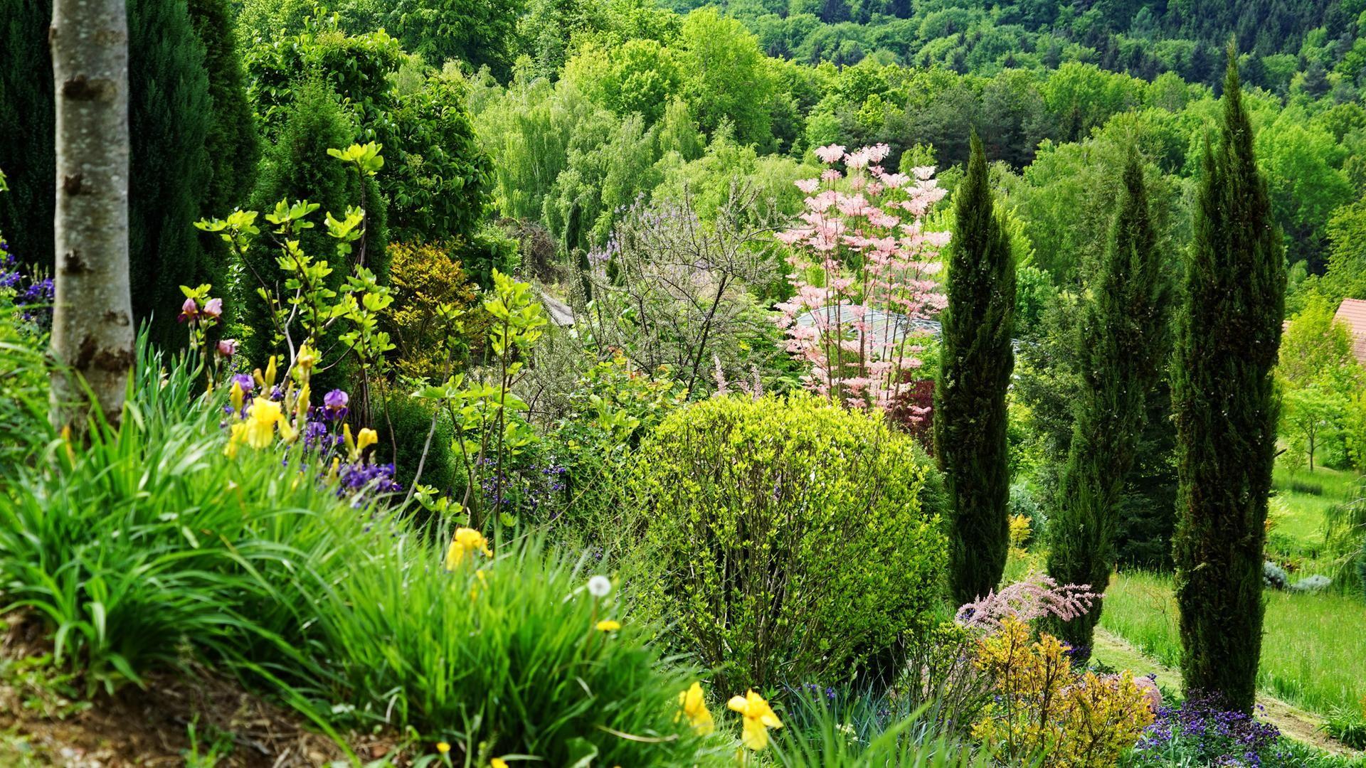Natur Im Garten 7 10 3sat Mediathek Dekohauseingang Gartengestaltungideen Gartenideen Wohnzimmerideenwandgestaltung Wohnzimmer Plants Outdoor Farmland