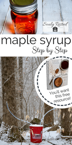 917785abde1 How to Make Maple Syrup step-by-step
