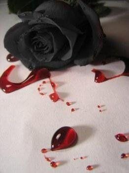Broken Heart Quotes Bleeding Rose Black Rose Rose Art