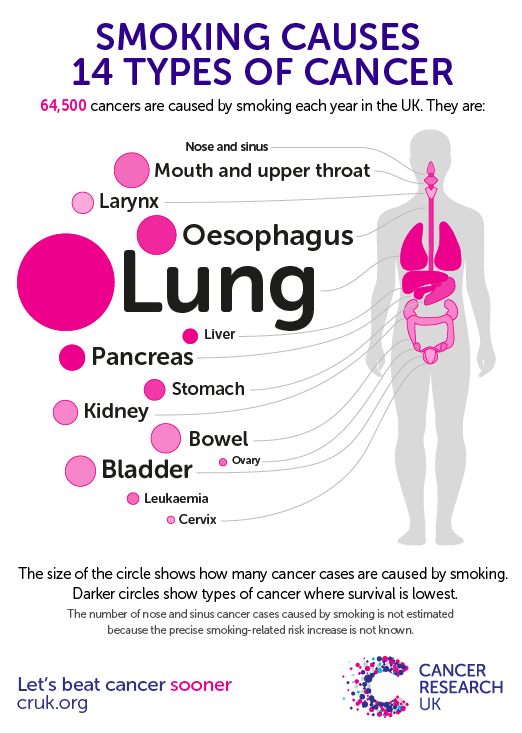 Causes of Lung Cancer - WebMD