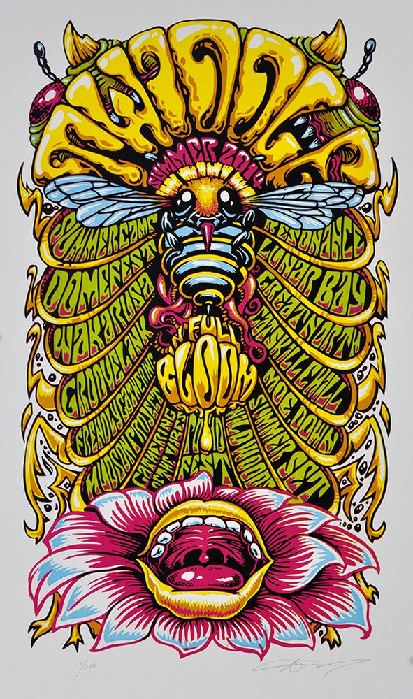 Image of twiddle summer tour 2014 in full bloom
