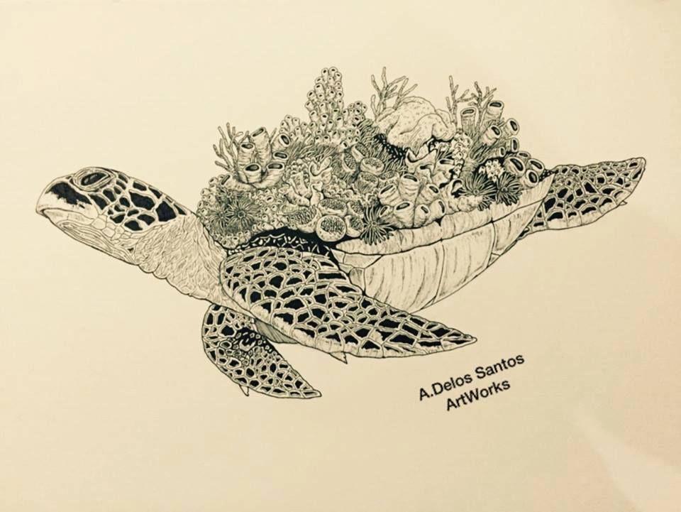 Sea Turtle | Mandala ♥ | Pinterest | Ilustraciones, Tatuajes y Dibujo