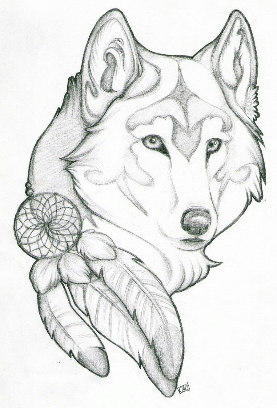 Wolf Dreamcatcher Drawing : dreamcatcher, drawing, Dreamcatcher, Feather, Drawings,, Sketch,, Drawings