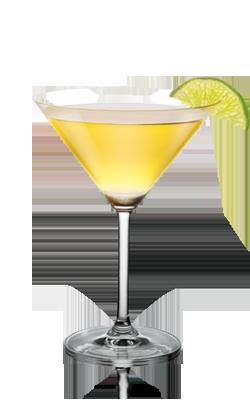 skyy vodka rating