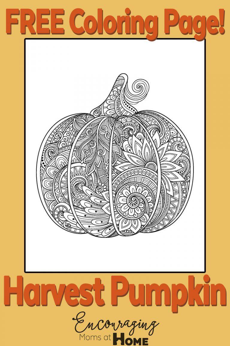Pumpkin | Art | Pinterest