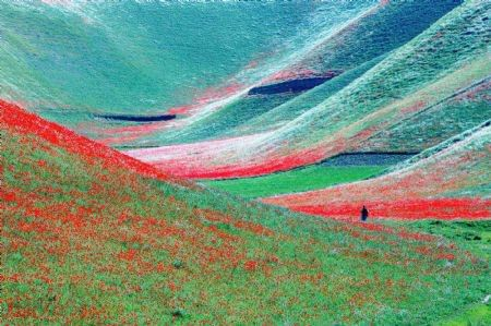 Spring In Afghanistan Spring Scenery Beautiful Nature Pictures