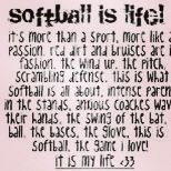 For all the softball lovers