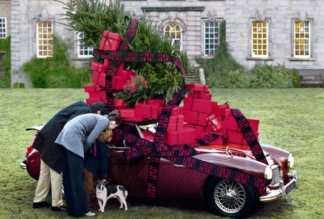 The Terrier and Lobster. By Tim Walker