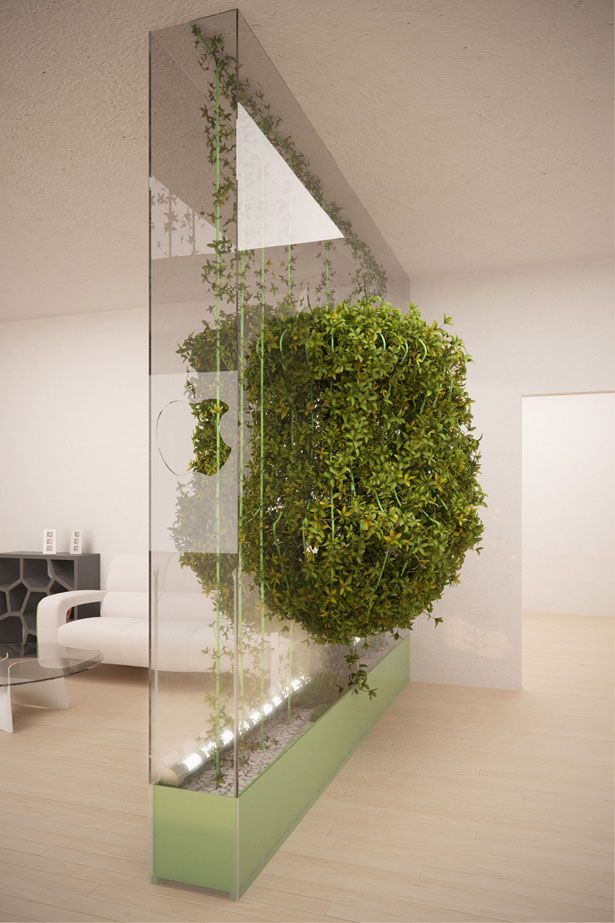 Green Partition Cleans The Air In Your Home Partition