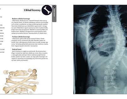 """Check out new work on my @Behance portfolio: """"The human body - CDV"""" http://be.net/gallery/48070295/The-human-body-CDV"""