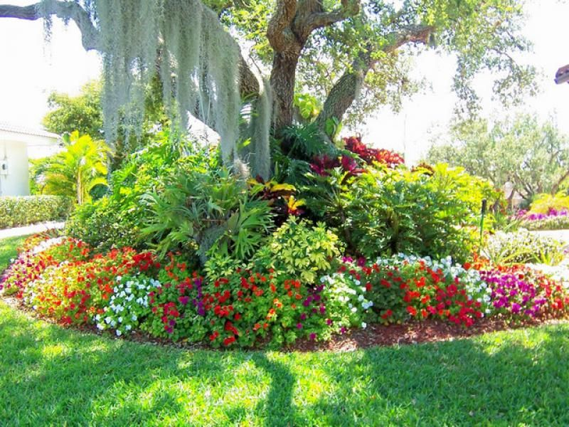 Backyard Outstanding Garden With Round Flower Bed Tall Tree And Spanish Moss Personal To Refresh Your Mind