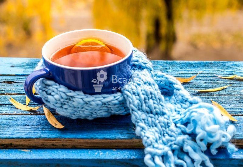 успокаивающий чай для детей 6 лет